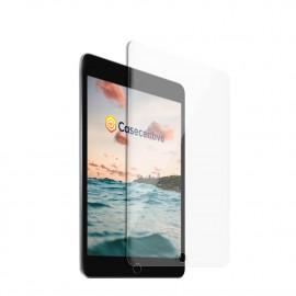 Casecentive Glass Screenprotector 2D iPad Mini 5 (2019) / Mini 4